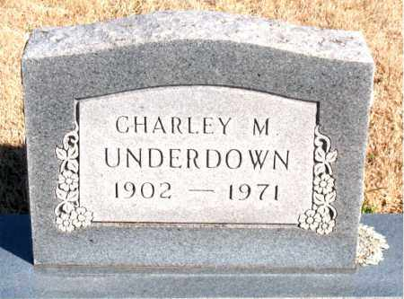 UNDERDOWN, CHARLEY M. - Newton County, Arkansas | CHARLEY M. UNDERDOWN - Arkansas Gravestone Photos