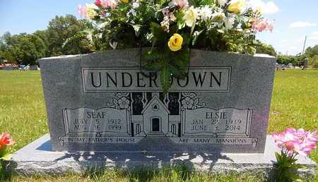 UNDERDOWN, SEAF - Newton County, Arkansas | SEAF UNDERDOWN - Arkansas Gravestone Photos