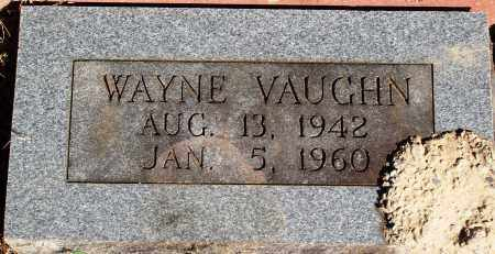 VAUGHN, CHESTER WAYNE - Newton County, Arkansas | CHESTER WAYNE VAUGHN - Arkansas Gravestone Photos