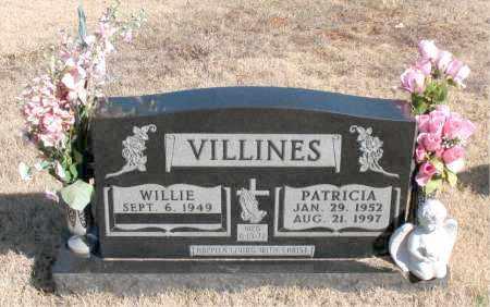 VILLINES, PATRICIA - Newton County, Arkansas | PATRICIA VILLINES - Arkansas Gravestone Photos