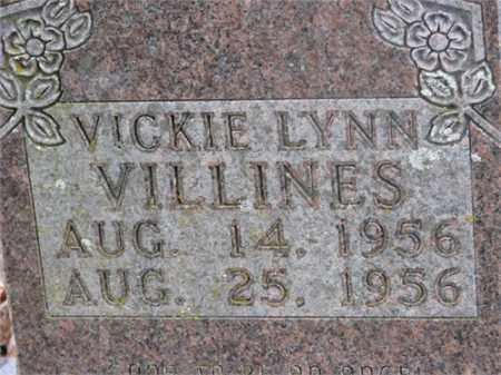 VILLINES, VICKIE LYNN - Newton County, Arkansas | VICKIE LYNN VILLINES - Arkansas Gravestone Photos