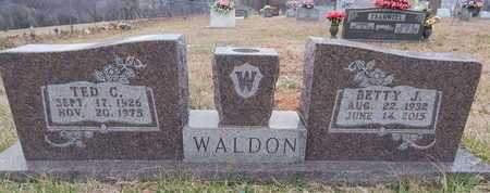 WALDON, TED CARL - Newton County, Arkansas | TED CARL WALDON - Arkansas Gravestone Photos