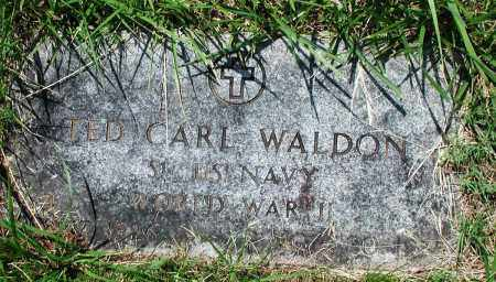 WALDON (VETERAN WWII), TED CARL - Newton County, Arkansas | TED CARL WALDON (VETERAN WWII) - Arkansas Gravestone Photos