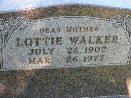 WALKER, LOTTIE - Newton County, Arkansas | LOTTIE WALKER - Arkansas Gravestone Photos