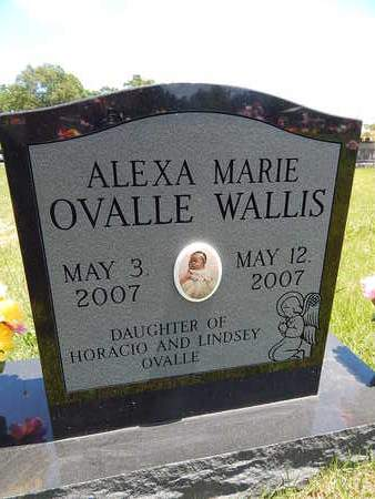 WALLIS, ALEXA MARIE OVALLE - Newton County, Arkansas | ALEXA MARIE OVALLE WALLIS - Arkansas Gravestone Photos