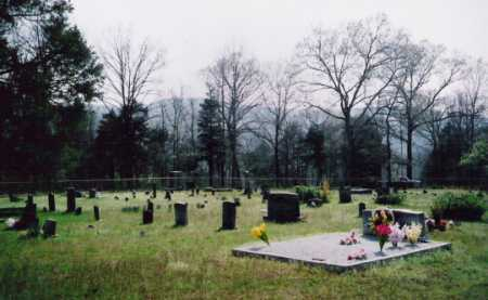 *WALNUT CEMETERY OVERVIEW,  - Newton County, Arkansas |  *WALNUT CEMETERY OVERVIEW - Arkansas Gravestone Photos