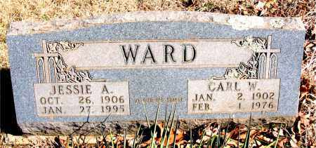 WARD, CARL W. - Newton County, Arkansas | CARL W. WARD - Arkansas Gravestone Photos