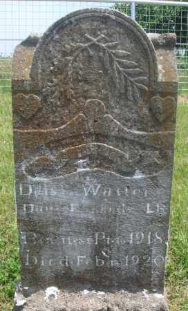 WATERS, DAISY - Newton County, Arkansas | DAISY WATERS - Arkansas Gravestone Photos