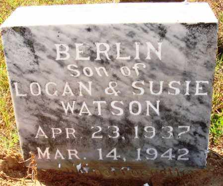 WATSON, BERLIN - Newton County, Arkansas | BERLIN WATSON - Arkansas Gravestone Photos