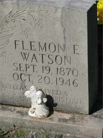 WATSON, FLEMON E. - Newton County, Arkansas | FLEMON E. WATSON - Arkansas Gravestone Photos