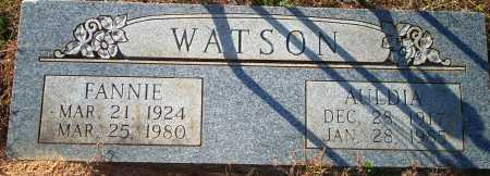 WATSON, FANNIE - Newton County, Arkansas | FANNIE WATSON - Arkansas Gravestone Photos