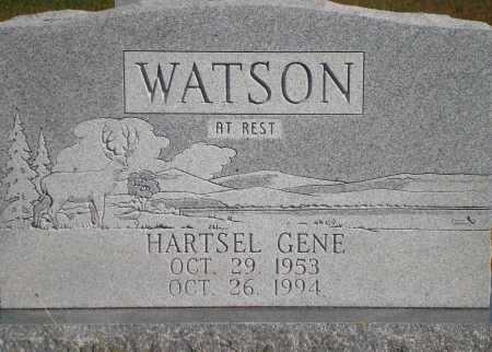 WATSON, HARTSEL GENE - Newton County, Arkansas   HARTSEL GENE WATSON - Arkansas Gravestone Photos