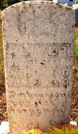 WATSON, OLIVER - Newton County, Arkansas | OLIVER WATSON - Arkansas Gravestone Photos