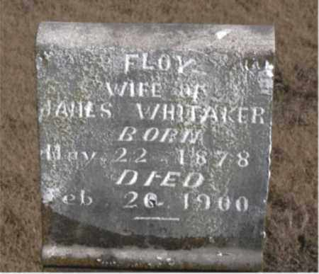 WHITAKER, FLOY - Newton County, Arkansas | FLOY WHITAKER - Arkansas Gravestone Photos