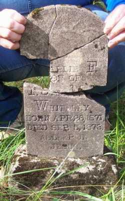 "WHITELEY, GEORGE ""CHARLIE"" C.L.F. - Newton County, Arkansas   GEORGE ""CHARLIE"" C.L.F. WHITELEY - Arkansas Gravestone Photos"
