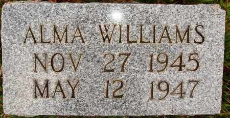 WILLIAMS, ALMA - Newton County, Arkansas | ALMA WILLIAMS - Arkansas Gravestone Photos