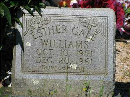 WILLIAMS, ESTHER GALE - Newton County, Arkansas | ESTHER GALE WILLIAMS - Arkansas Gravestone Photos