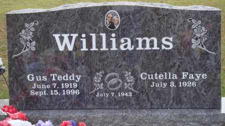 WILLIAMS, GUS TEDDY - Newton County, Arkansas | GUS TEDDY WILLIAMS - Arkansas Gravestone Photos