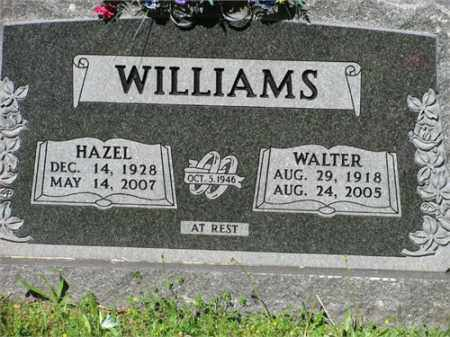 WILLIAMS, WALTER - Newton County, Arkansas | WALTER WILLIAMS - Arkansas Gravestone Photos