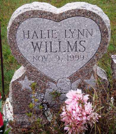 WILLMS, HALIE LYNN - Newton County, Arkansas | HALIE LYNN WILLMS - Arkansas Gravestone Photos