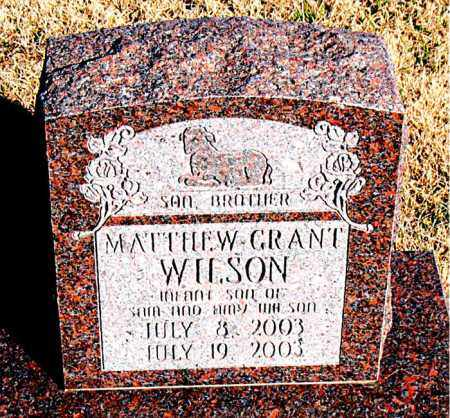 WILSON, MATTHEW GRANT - Newton County, Arkansas | MATTHEW GRANT WILSON - Arkansas Gravestone Photos
