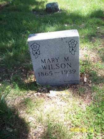 "WILSON, MARY ARMANDA LUCINDA ""MANDY"" - Newton County, Arkansas 