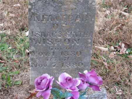 WISHON, INFANT - Newton County, Arkansas | INFANT WISHON - Arkansas Gravestone Photos