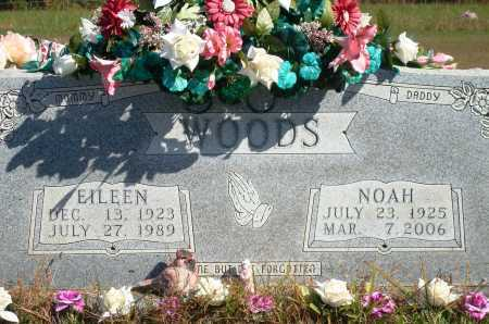 WOODS, EILEEN - Newton County, Arkansas | EILEEN WOODS - Arkansas Gravestone Photos