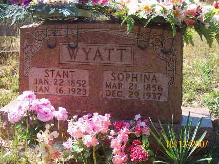 WARD WYATT, SOPHINA - Newton County, Arkansas | SOPHINA WARD WYATT - Arkansas Gravestone Photos