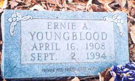 YOUNGBLOOD, ERNIE A. - Newton County, Arkansas | ERNIE A. YOUNGBLOOD - Arkansas Gravestone Photos