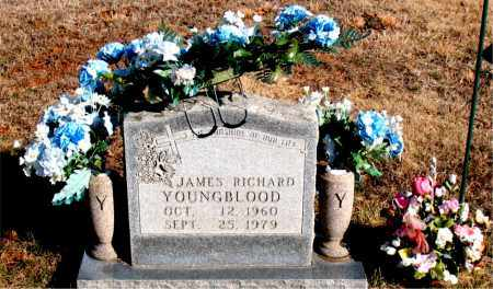 YOUNGBLOOD, JAMES RICHARD - Newton County, Arkansas | JAMES RICHARD YOUNGBLOOD - Arkansas Gravestone Photos