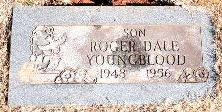 YOUNGBLOOD, ROGER DALE - Newton County, Arkansas | ROGER DALE YOUNGBLOOD - Arkansas Gravestone Photos