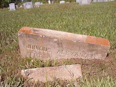 ALEXANDER, JUNIOUS - Ouachita County, Arkansas | JUNIOUS ALEXANDER - Arkansas Gravestone Photos