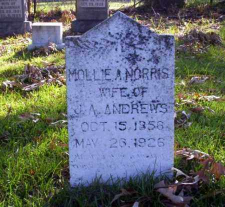 NORRIS ANDREWS, MOLLIE A - Ouachita County, Arkansas | MOLLIE A NORRIS ANDREWS - Arkansas Gravestone Photos