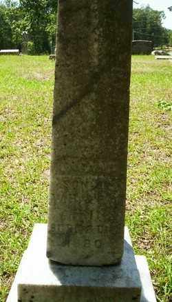 ATKINS, INFANT SON - Ouachita County, Arkansas | INFANT SON ATKINS - Arkansas Gravestone Photos