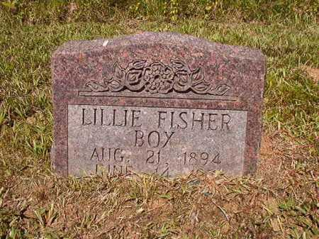BOX, LILLIE - Ouachita County, Arkansas | LILLIE BOX - Arkansas Gravestone Photos