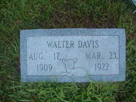 DAVIS, WALTER - Ouachita County, Arkansas | WALTER DAVIS - Arkansas Gravestone Photos