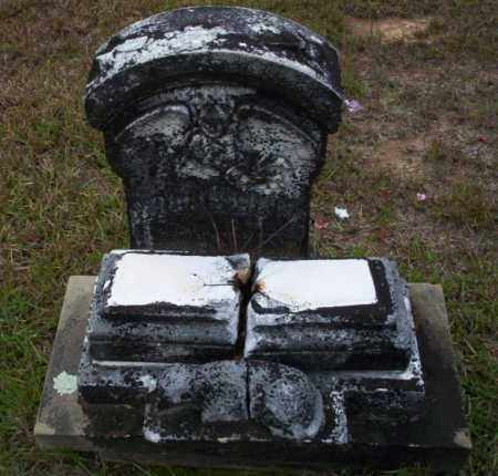 DEETS, WILLIE LINN - Ouachita County, Arkansas | WILLIE LINN DEETS - Arkansas Gravestone Photos