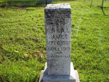 JAMES, SON - Ouachita County, Arkansas | SON JAMES - Arkansas Gravestone Photos