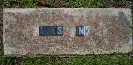 JINKS, JAMES - Ouachita County, Arkansas | JAMES JINKS - Arkansas Gravestone Photos