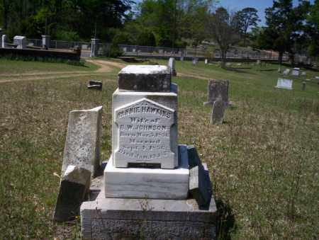 JOHNSON, MINNIE - Ouachita County, Arkansas | MINNIE JOHNSON - Arkansas Gravestone Photos