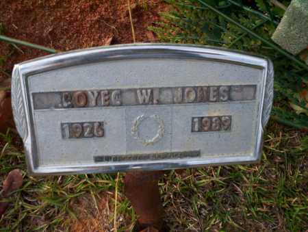 JONES, ROYEC W - Ouachita County, Arkansas | ROYEC W JONES - Arkansas Gravestone Photos