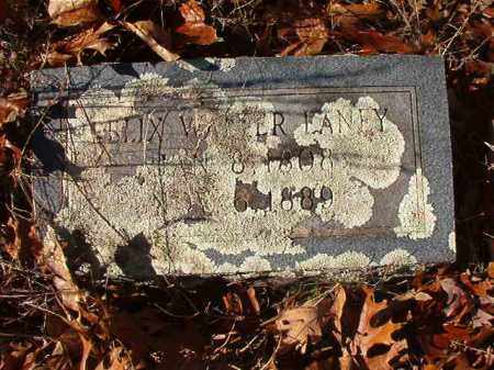 LANEY, FELIX WALTER - Ouachita County, Arkansas | FELIX WALTER LANEY - Arkansas Gravestone Photos