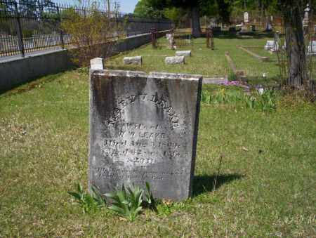 LEAKE, MARY V - Ouachita County, Arkansas | MARY V LEAKE - Arkansas Gravestone Photos
