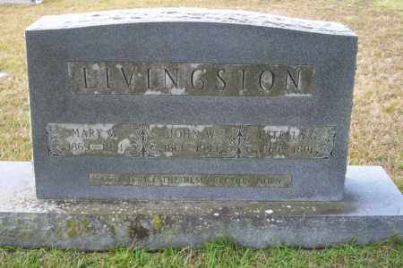 LIVINGSTON, JOHN W - Ouachita County, Arkansas | JOHN W LIVINGSTON - Arkansas Gravestone Photos