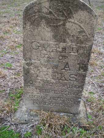MEEKS, GATHIE - Ouachita County, Arkansas | GATHIE MEEKS - Arkansas Gravestone Photos