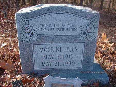 NETTLES, MOSE - Ouachita County, Arkansas | MOSE NETTLES - Arkansas Gravestone Photos