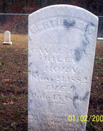 RILEY, BERTIE LERS - Ouachita County, Arkansas | BERTIE LERS RILEY - Arkansas Gravestone Photos