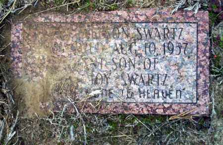 SWARTZ, JERRY NELSON - Ouachita County, Arkansas | JERRY NELSON SWARTZ - Arkansas Gravestone Photos