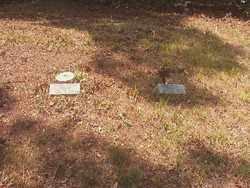 *WALLACE CEMETERY,  - Ouachita County, Arkansas |  *WALLACE CEMETERY - Arkansas Gravestone Photos